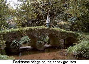 Walsingham Abbey Packhorse Bridge