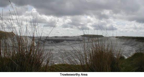 Trowlesworthy Area Dartmoor
