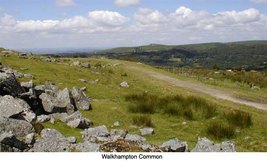 Walkhampton Common Dartmoor