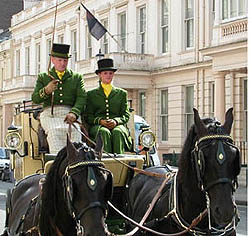Westways Carriage Horses