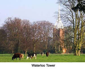 Waterloo Tower