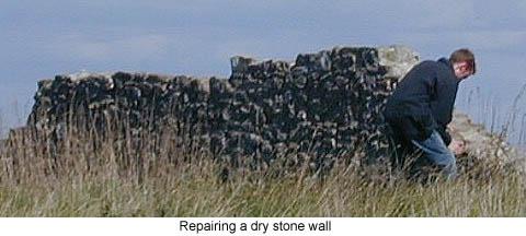 Repairing a Dry Stone Wall