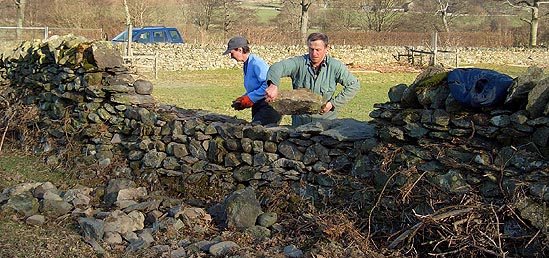 Mending a Dry Stone Wall