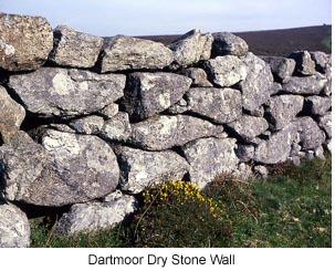 Dartmoor Stone Wall